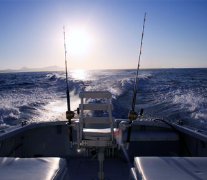 Cabo Fishing: Bountiful Waters And Beautiful Scenery