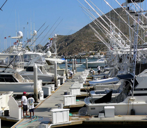 Cabo Fishing Regulations